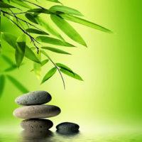 Le stagioni del corpo Yoga e Shiatsu stiramento dei meridiani